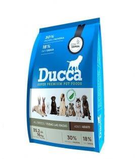 Ducca-Adulto-
