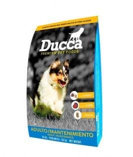 Ducca-Mantenimiento-