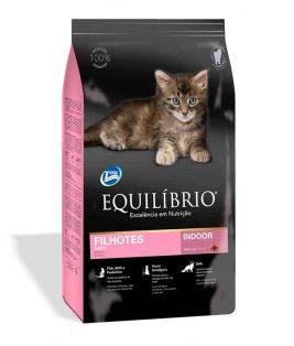 Equilibrio-Kittens-1.5kg.jpg